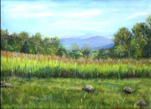 Mountaingrasses